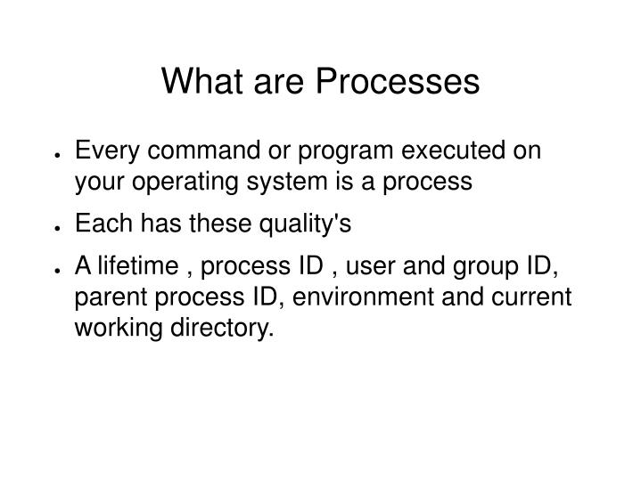 What are Processes