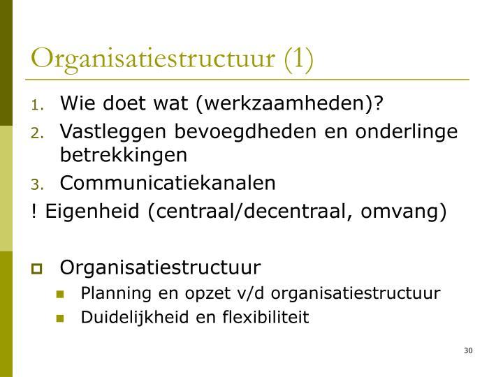 Organisatiestructuur (1)