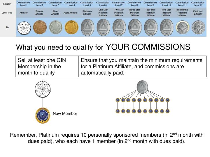 What you need to qualify for