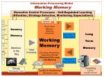 information processing model working memory