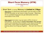 short term memory stm or working memory