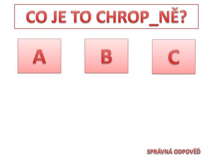 CO JE TO CHROP_NĚ?