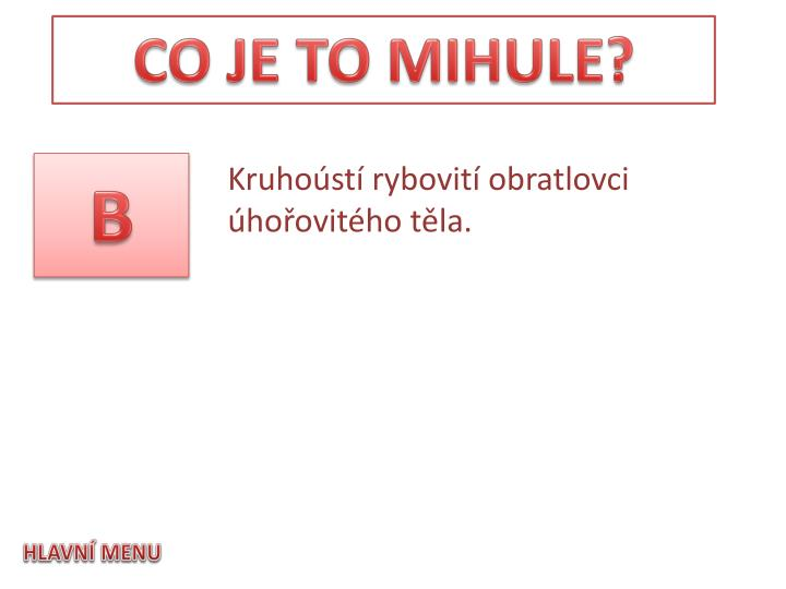 CO JE TO MIHULE?
