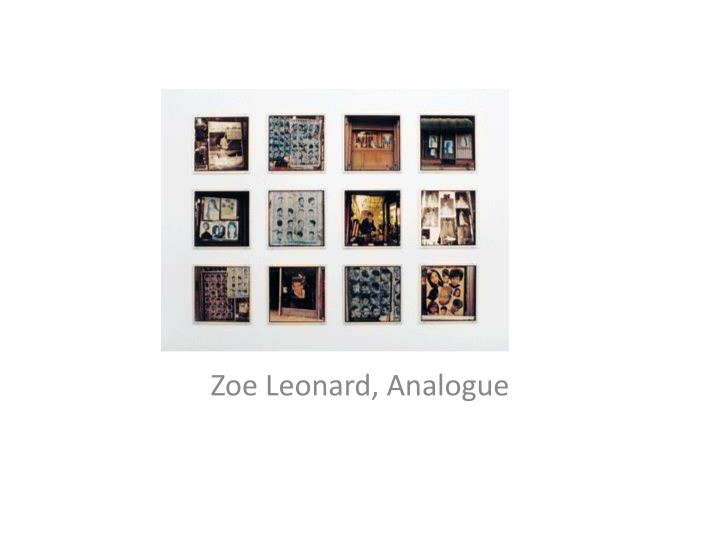 Zoe leonard analogue