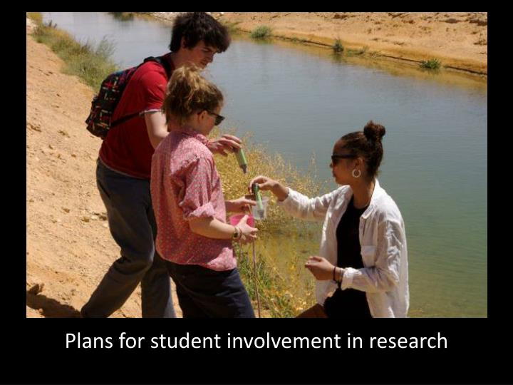 Plans for student involvement in research