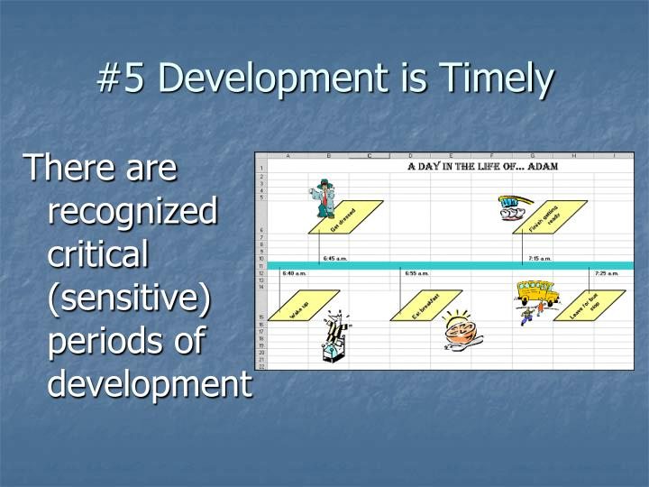 #5 Development is Timely