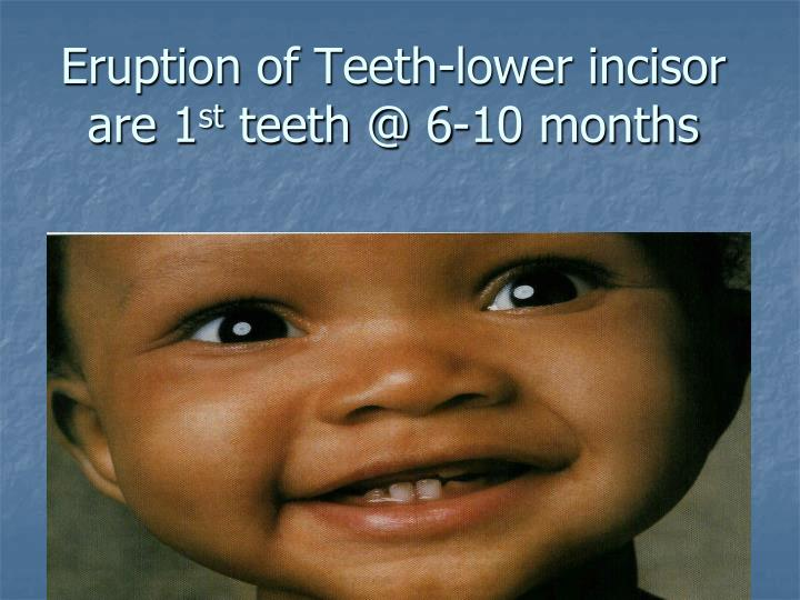 Eruption of Teeth-lower incisor are 1