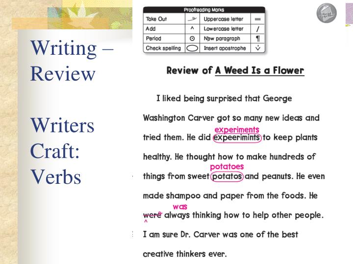 Writing – Review