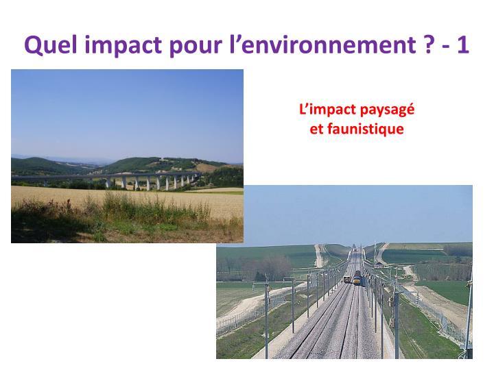 Quel impact pour l'environnement ? - 1