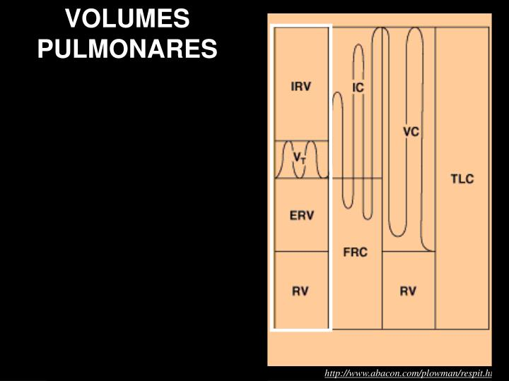 VOLUMES PULMONARES