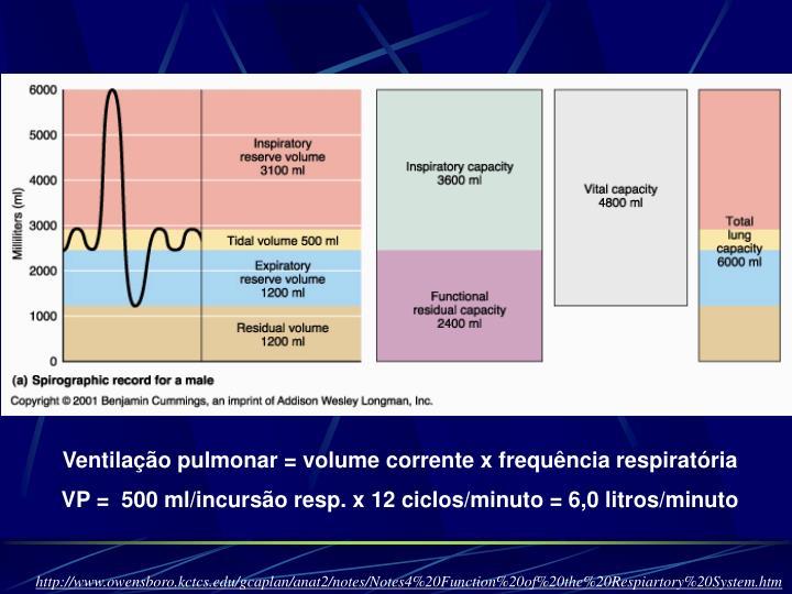 Ventilação pulmonar = volume corrente x frequência respiratória