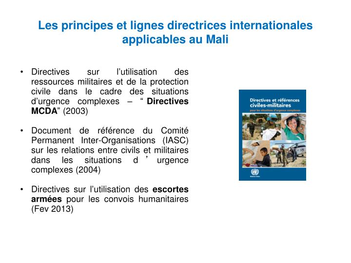 Les principes et lignes directrices internationales applicables au Mali