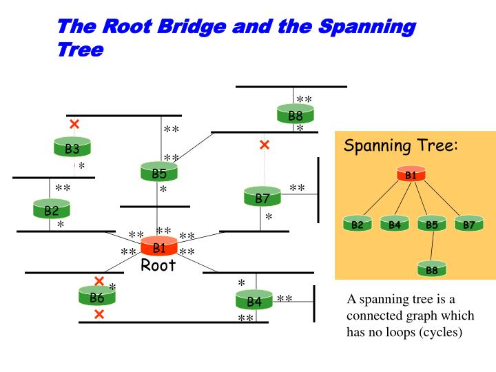 The Root Bridge and the Spanning Tree