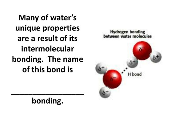 Many of water's unique properties are a result of its