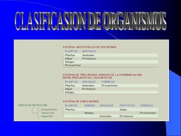 CLASIFICASION DE ORGANISMOS