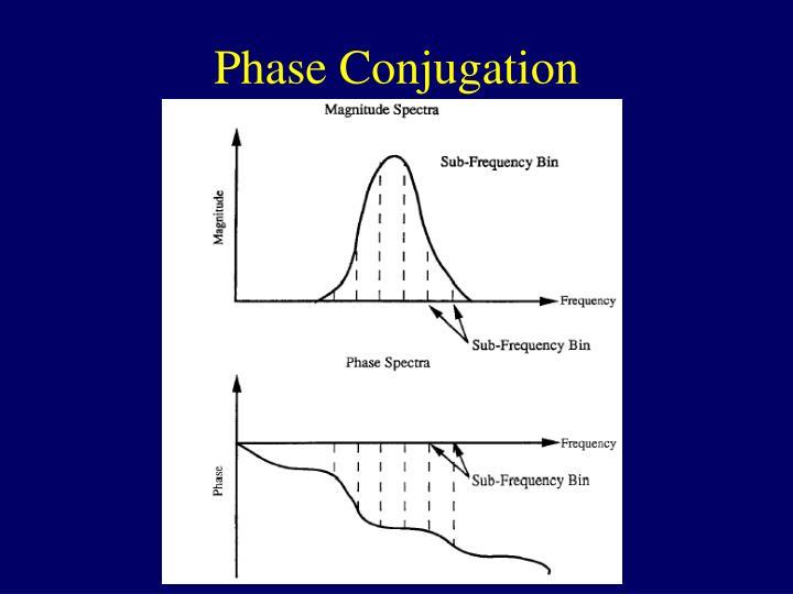 Phase Conjugation