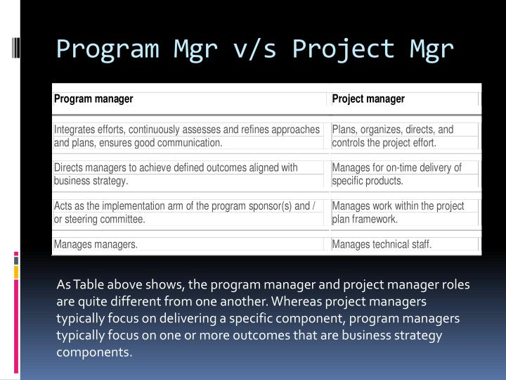 Program Mgr v/s Project Mgr