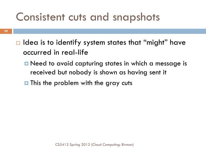 Consistent cuts and snapshots