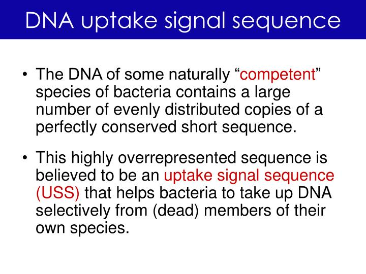 Dna uptake signal sequence