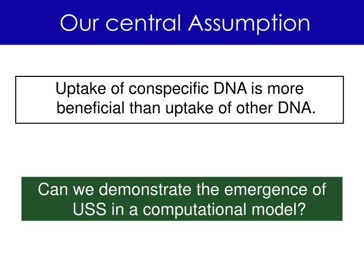 Our central Assumption