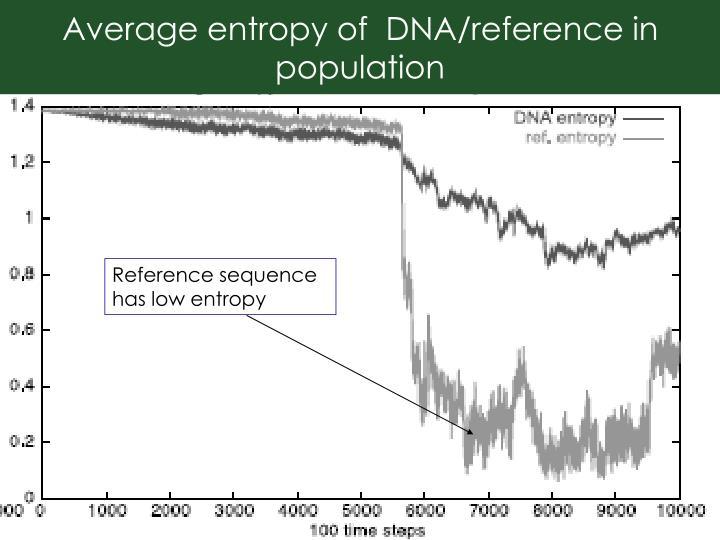Average entropy of  DNA/reference in population