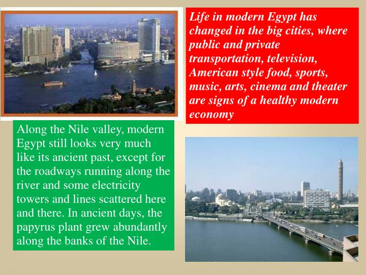 Life in modern Egypt has changed in the big cities, where public and private transportation, television, American style food, sports, music, arts, cinema and theater are signs of a healthy modern economy