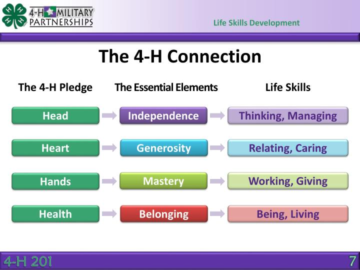 The 4-H Connection