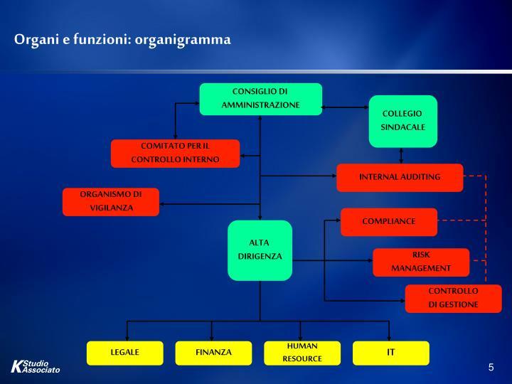 Organi e funzioni: organigramma