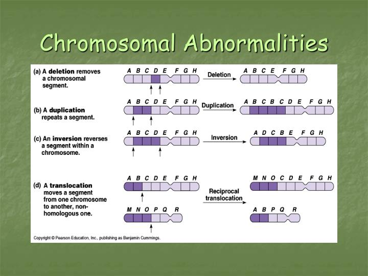 PPT - Genetic Disorders PowerPoint Presentation - ID:6387428