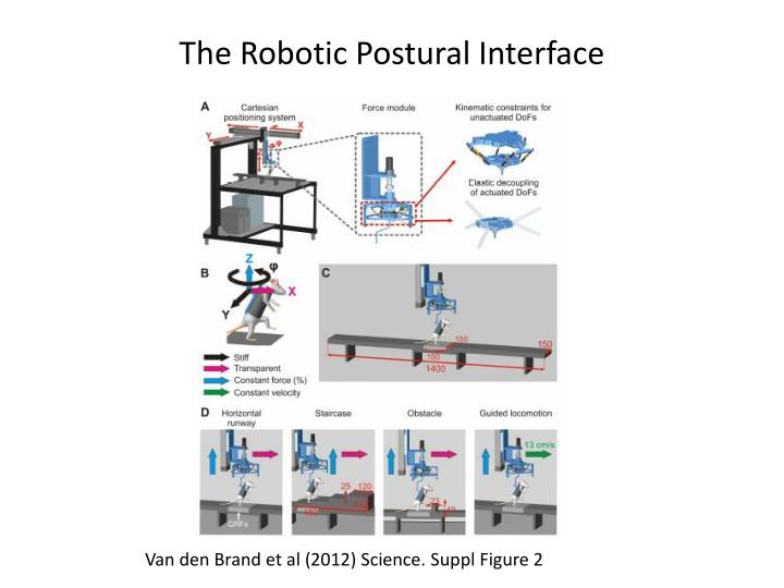 The Robotic Postural Interface