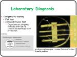 laboratory diagnosis1