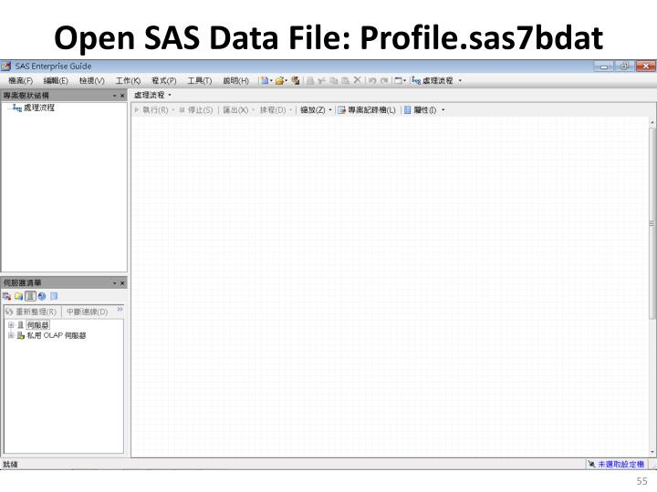 Open SAS Data File: Profile.sas7bdat