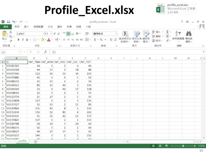 Profile_Excel.xlsx