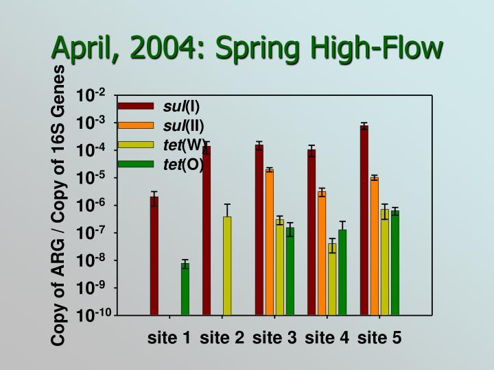April, 2004: Spring High-Flow