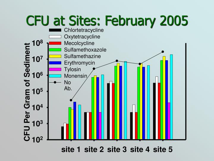 CFU at Sites: February 2005