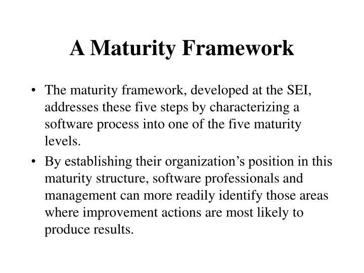 A Maturity Framework