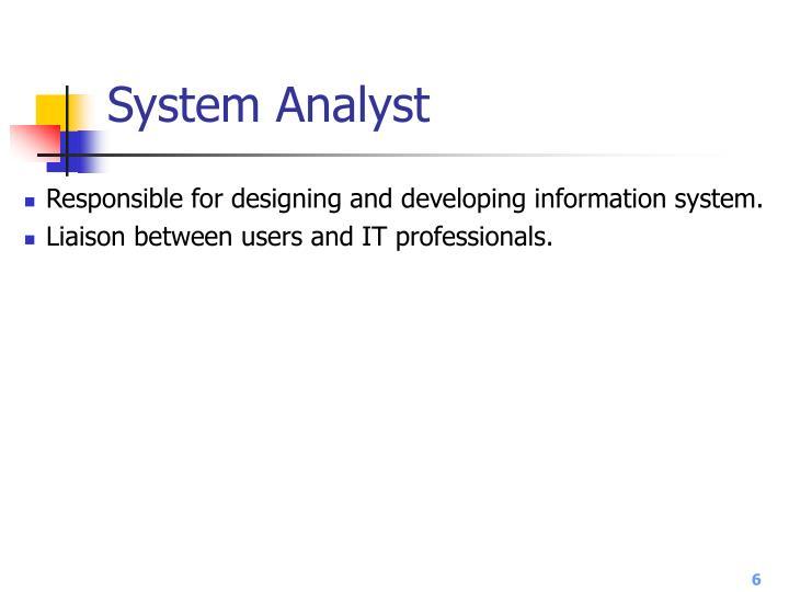 System Analyst