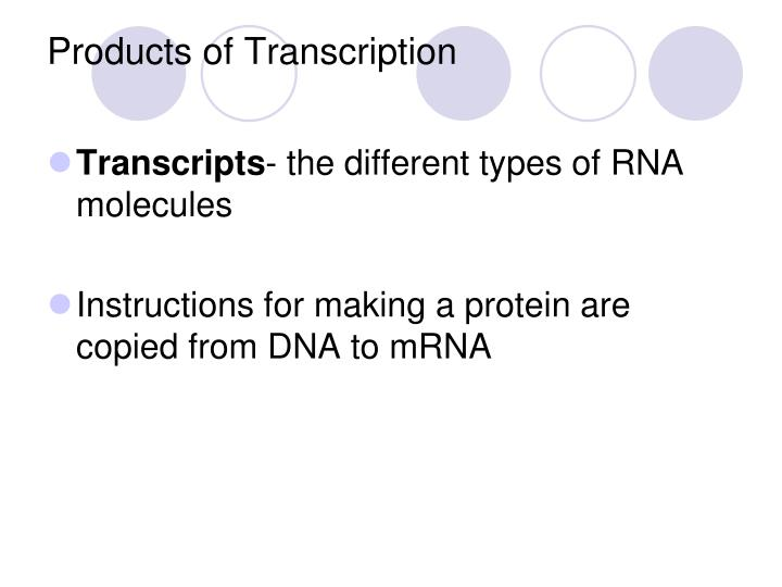Products of Transcription