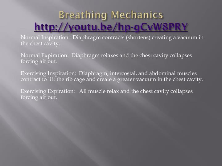 Breathing Mechanics
