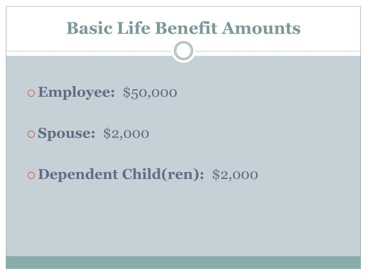 Basic Life Benefit Amounts