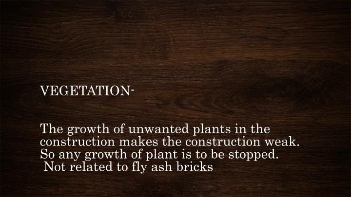 VEGETATION-