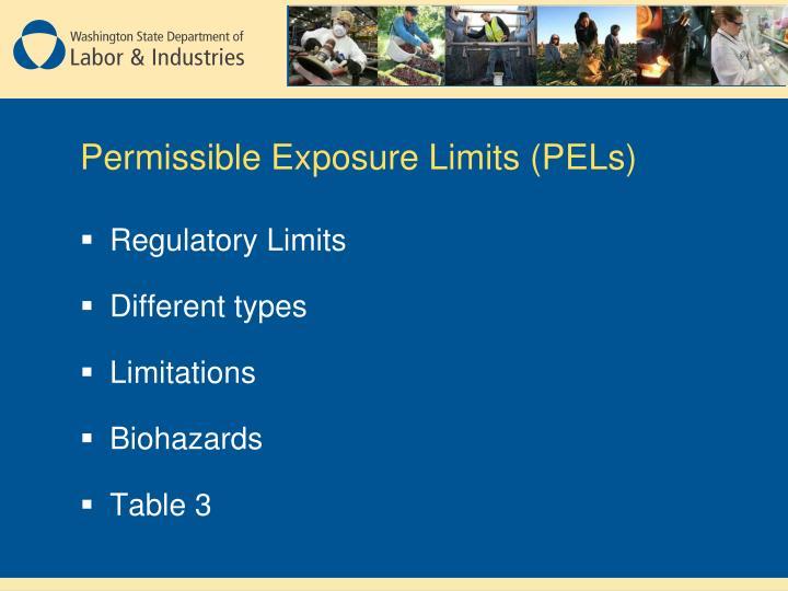 Permissible Exposure Limits (PELs)