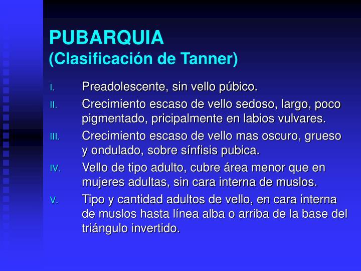 PUBARQUIA