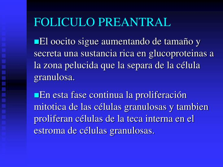 FOLICULO PREANTRAL