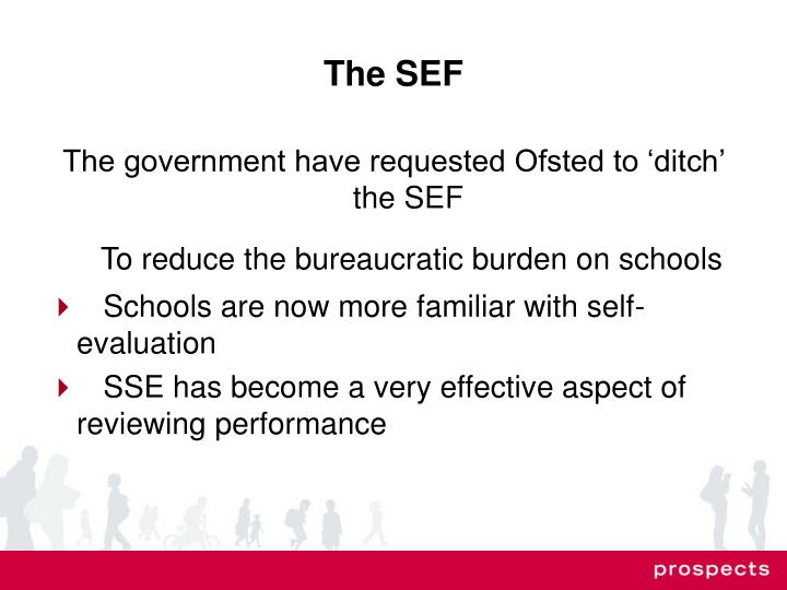 The SEF