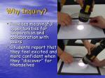 why inquiry1