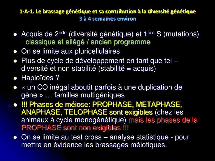 1-A-1. Le brassage génétique et sa contribution à la diversité génétique