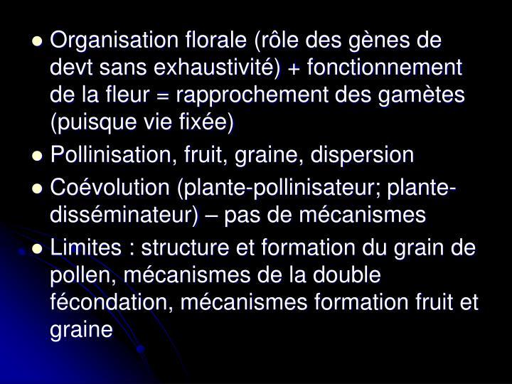 Organisation florale (rôle des gènes de