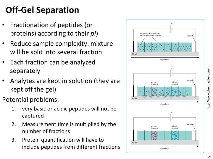 Off-Gel Separation
