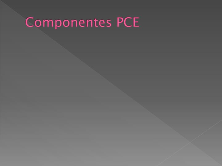 Componentes PCE